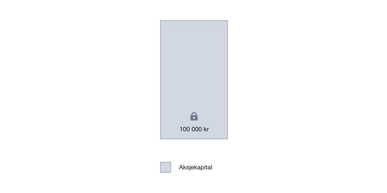 Aksjekapital på 100 000 kroner.